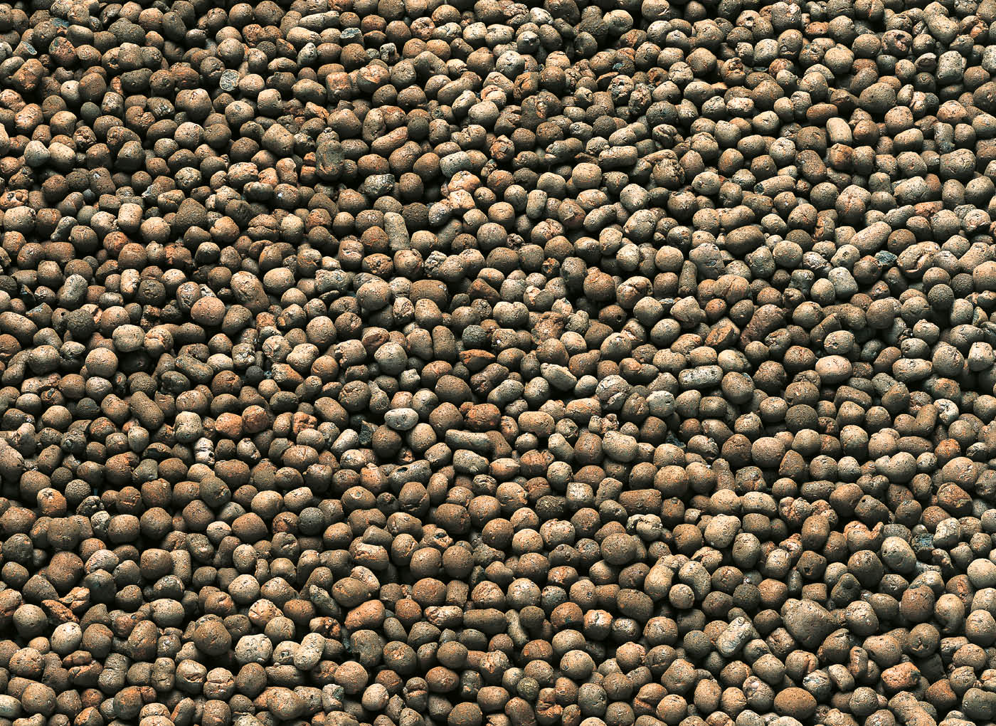 agrileca-argilla-espansa-per-piante-P43-3