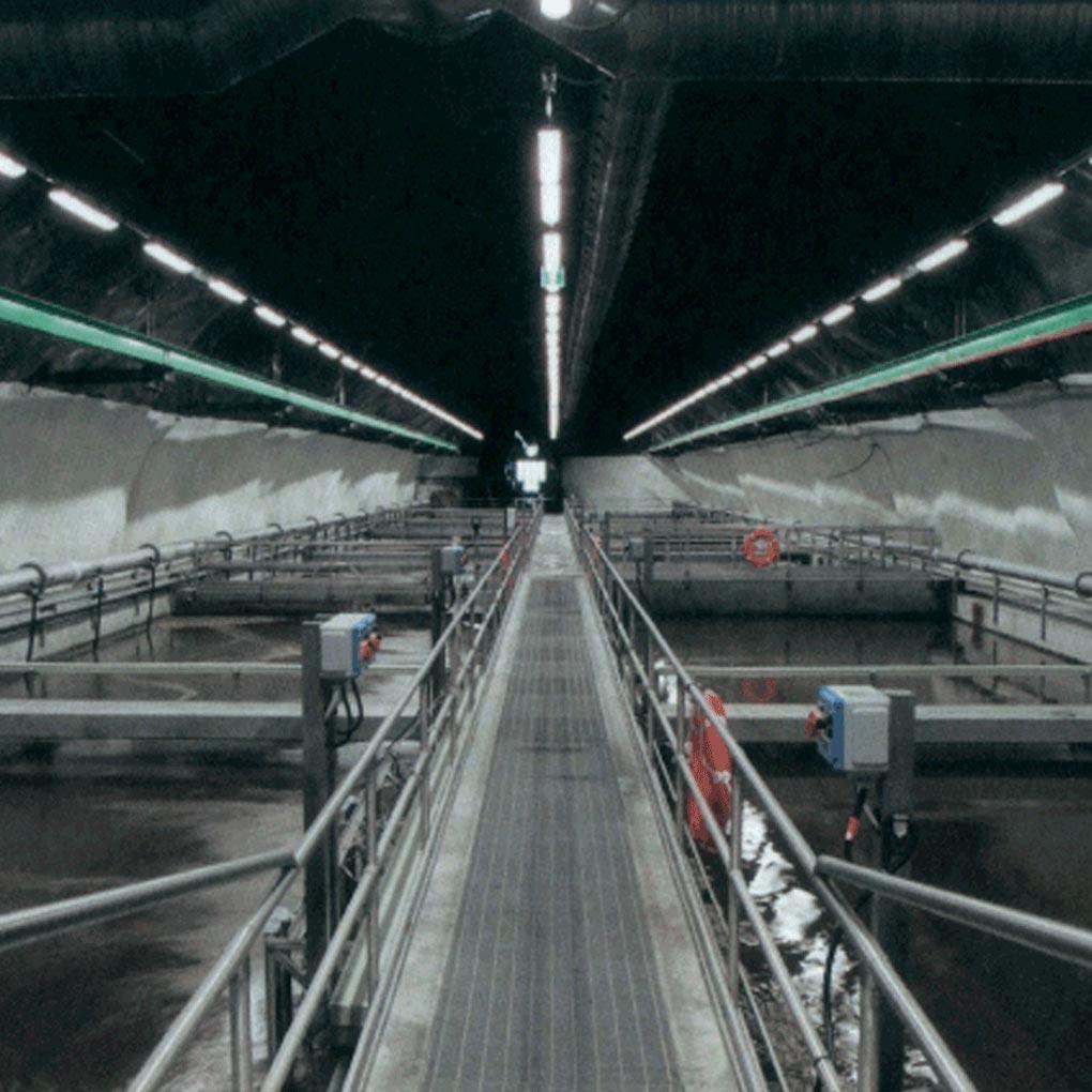 Filtración del agua, tratamiento del aire: biofiltros y biolavadores