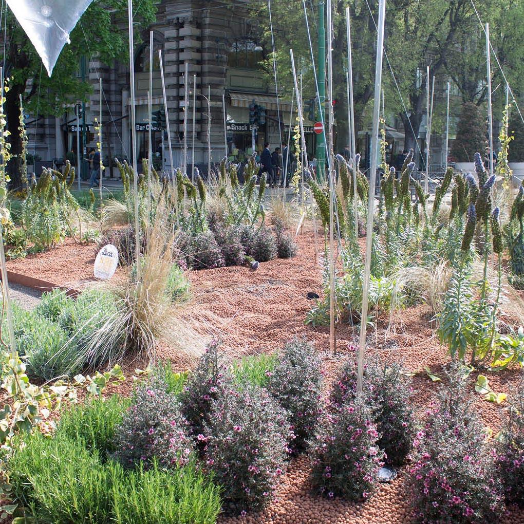 Mantillo para jardín, acolchado para suelos y macetas